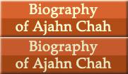 Biography of Ajahn Chah